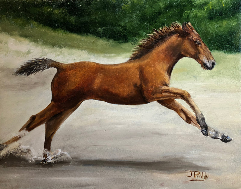 Wild Horse Adventure Tours - Wild Horses - Oil Painting by Jan Priddy, Wildlife Artist
