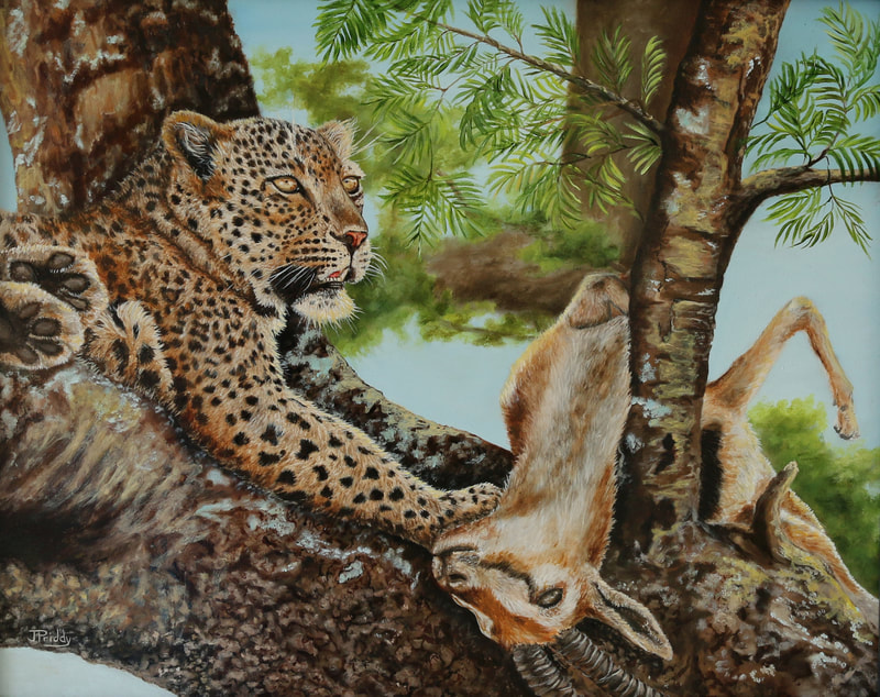 Leopard in a tree in Africa, Oil Painting by Jan Priddy, Award Winning Widlife Artist