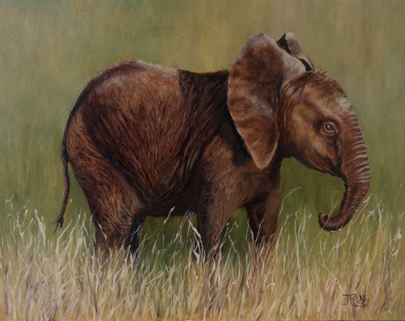 African Elephant Oil Painting by Jan Priddy, Wildlife Artist