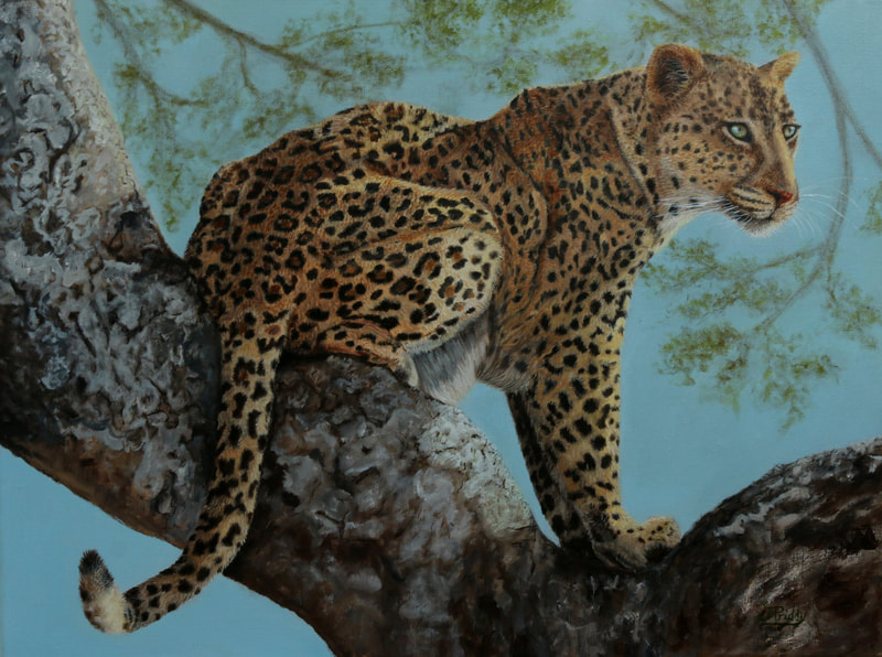 African Leopard - Oil Painting by Jan Priddy